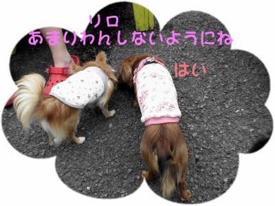 PIC_63212.jpg