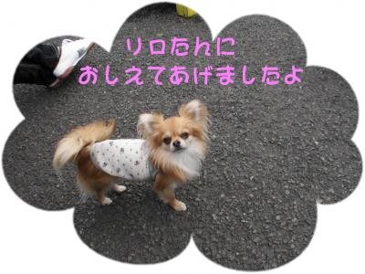 PIC_63242.jpg