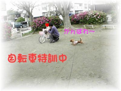 PIC_6406.jpg