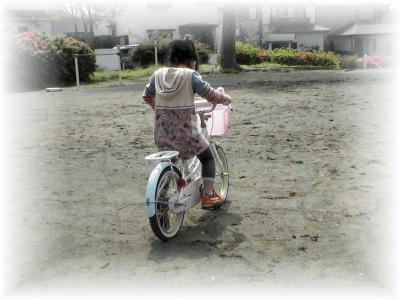 PIC_6417.jpg