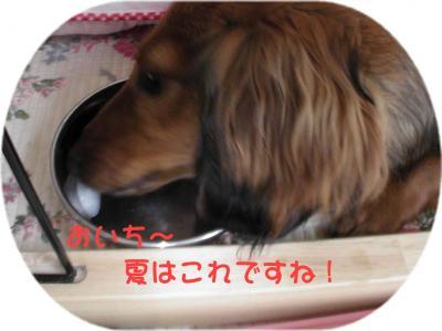 PIC_64332.jpg