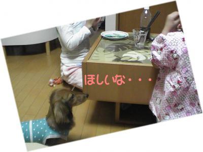 PIC_66172.jpg
