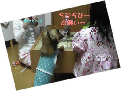 PIC_66222.jpg