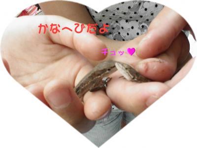 PIC_66802.jpg