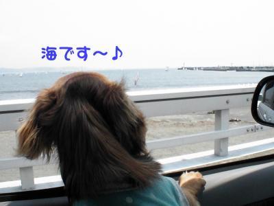 PIC_66942.jpg