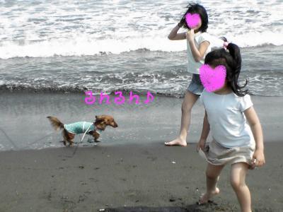 PIC_67112.jpg
