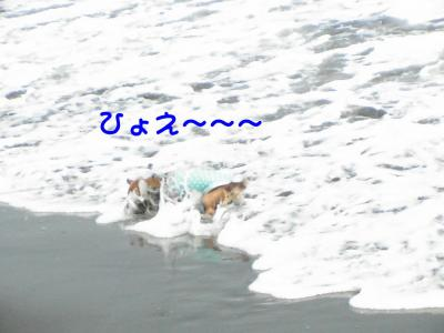PIC_67172.jpg