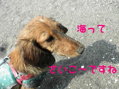 PIC_67262.jpg