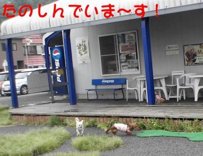 PIC_67792.jpg