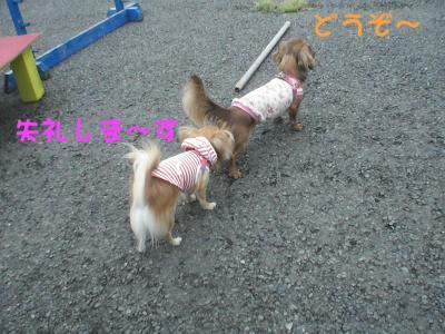 PIC_67842.jpg