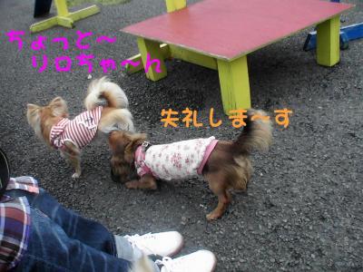 PIC_67892.jpg