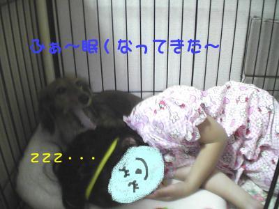 PIC_67932.jpg