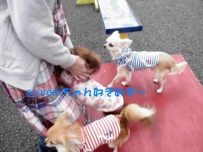 PIC_67972.jpg