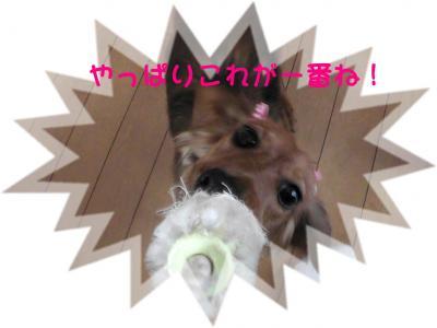 PIC_6846.jpg