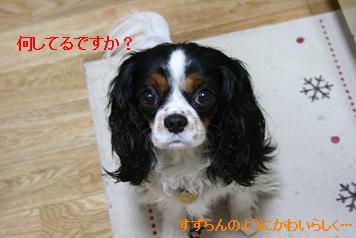 2008/06/03 その1