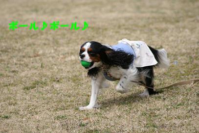 2008/03/16 その5