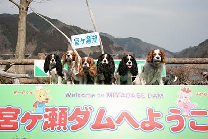 2008/03/16 その1