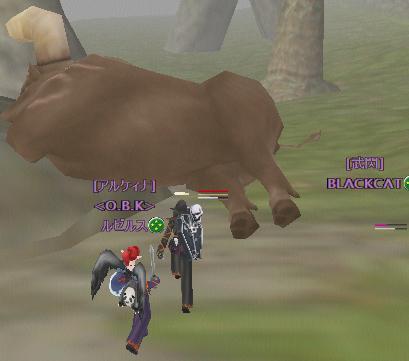 やけ牛に水