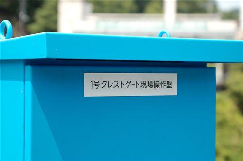 2008061711.jpg