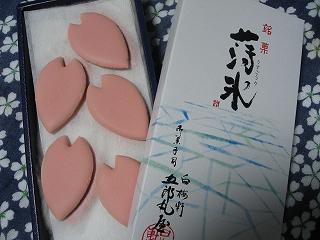 桜の和菓子6
