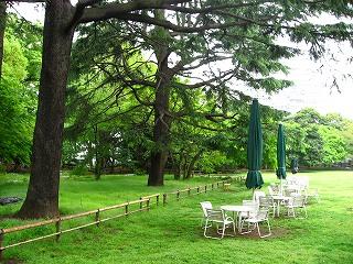 旧岩崎邸庭園21