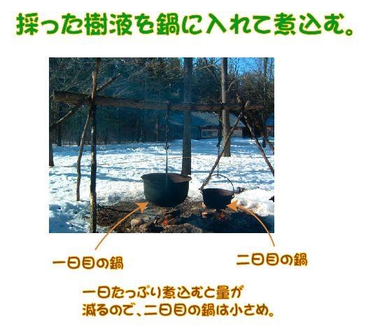 MaplesyrupPioneer3.jpg