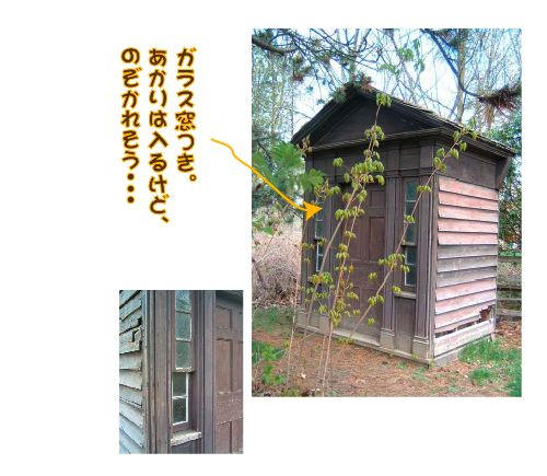 outhouse3.jpg
