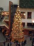 シネマメディアージュのクリスマスツリー