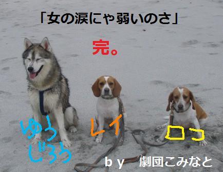 genb13.jpg