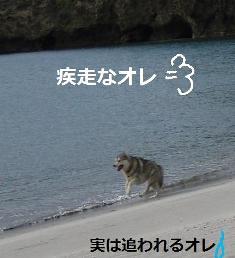 komiy3.jpg