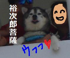 sayoy1.jpg