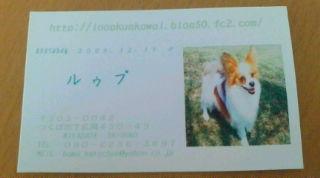20080805112805.jpg