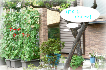 731お散歩5