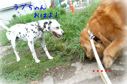 84お散歩2