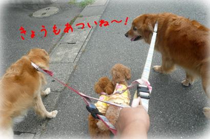 89お散歩1