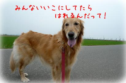6210.jpg