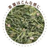 sakura_greentea.jpg