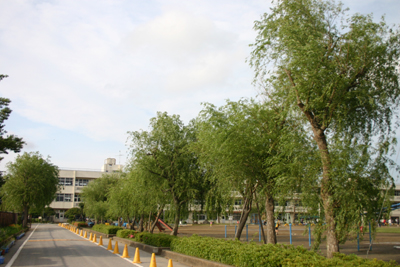 懐かしの学校