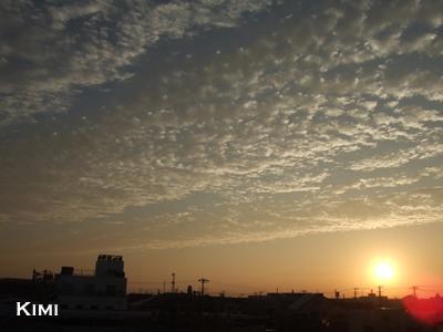 木更津の空
