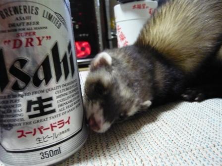 ビールかい!