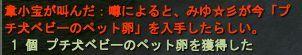 03-20 23-48 わんこ