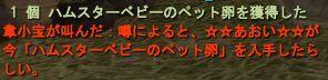 04-27 19-57 ハム卵