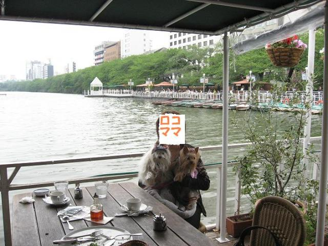 Canal cafe・樣ォ伜ウカ螻・邱ィ髮・シ狙convert_20080516115928