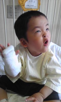 YOSHI入院④元気完全に復活