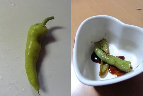 サラダピーマン初収穫