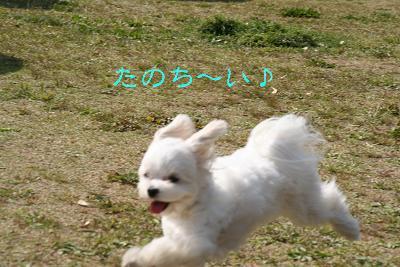 IMG_2407ワイ5