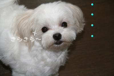 IMG_2476うれしい5