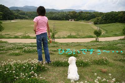 IMG_3196散歩3