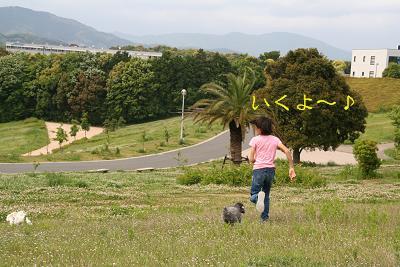 IMG_3137散歩5