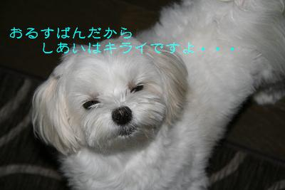 IMG_3640東海2